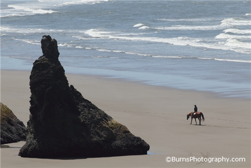 Horseback riding on the Oregon coast.