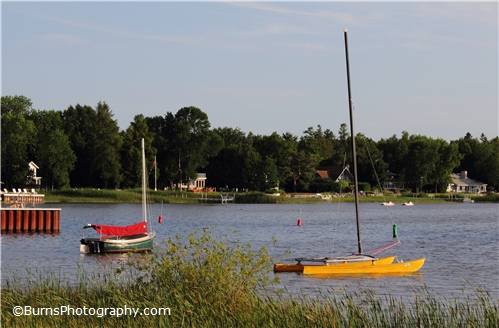 Picture of Green and Yellow Sailboats