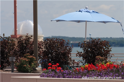 Flowers and Umbrella on the Monona Terrace