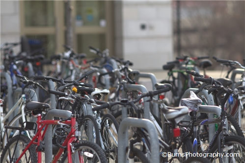 Picture of Bikes on Campus