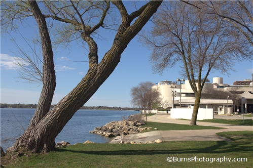 Monona Terrace from Law Park